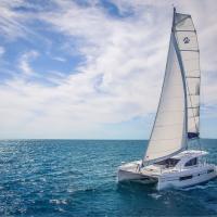 catamaran cup