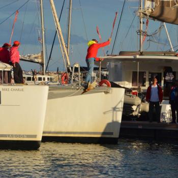 my first regatta – catamarans cup – cats anchored