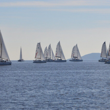 my first regatta – catamarans cup – racing