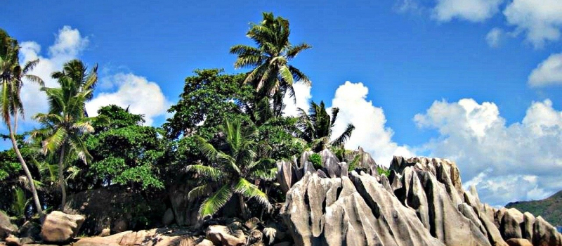 rocks, palm trees, and an island on a Seychelles sailing itinerary